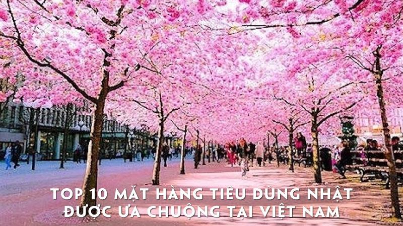 Top 10 mặt hàng tiêu dùng Nhật được ưa chuộng tại Việt Nam 12
